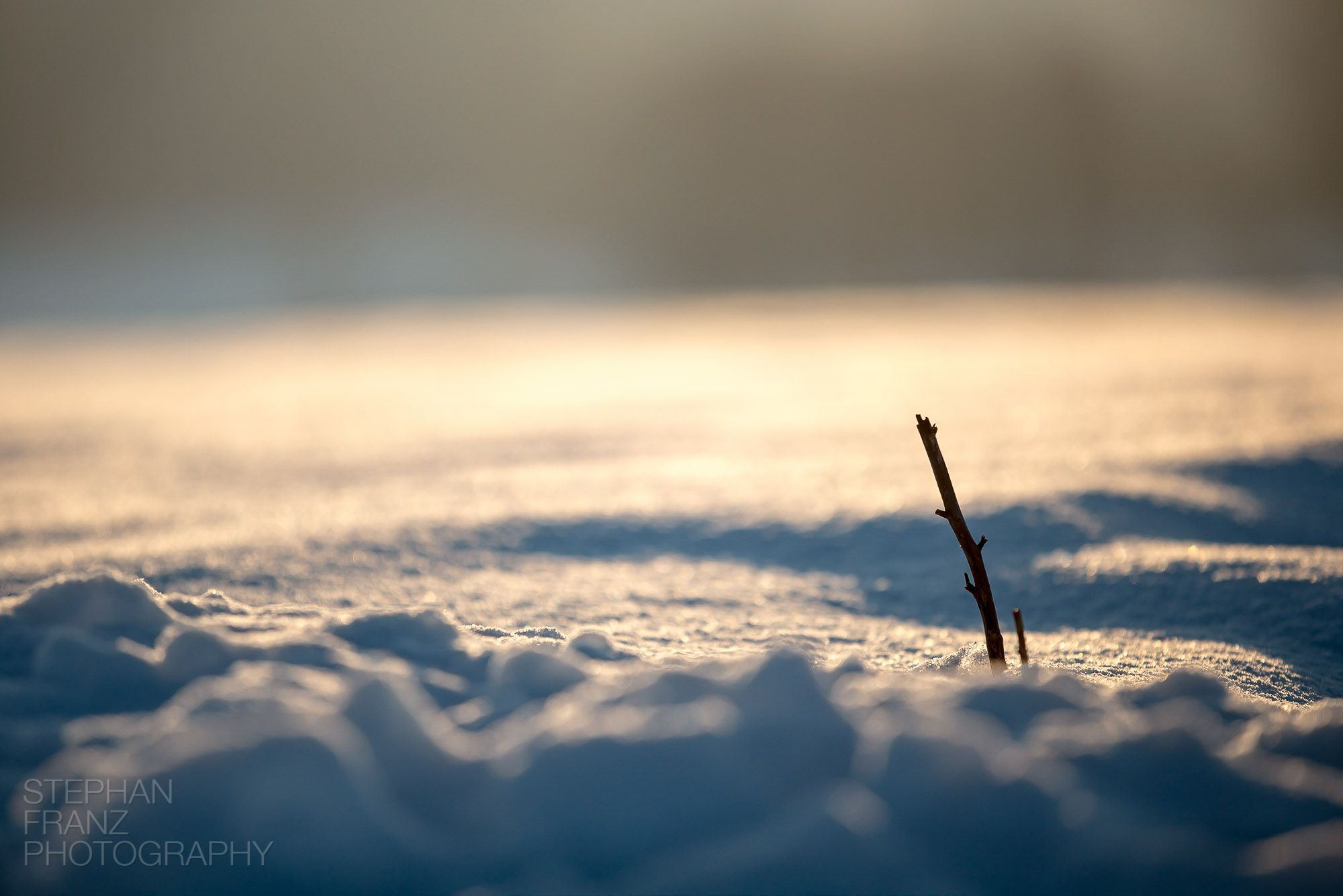 Winterspaziergang mit Angela in Beyharting bei Tuntenhausen im Alpenvorland in Bayern - Fotograf Stephan Franz Photography aus Rosenheim-5